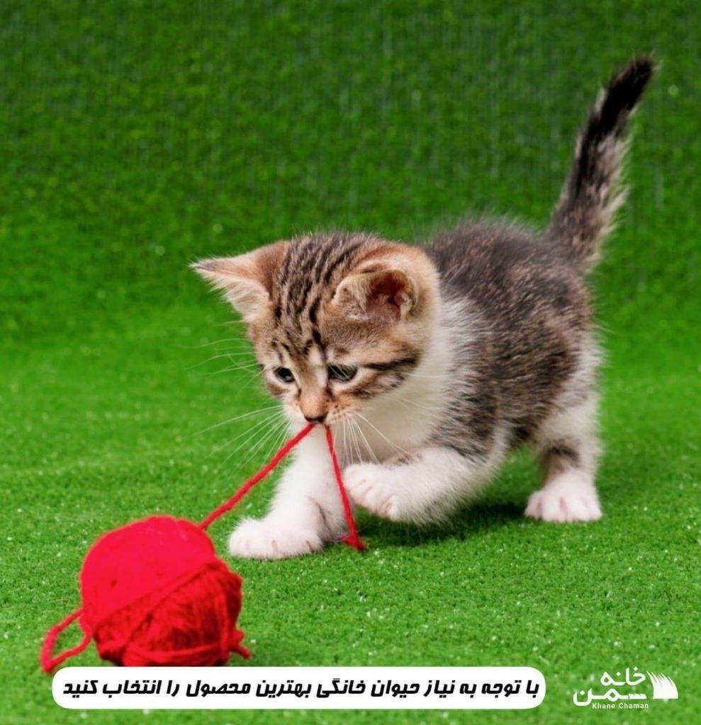 چمن مصنوعی مناسب برای سگ و گربه